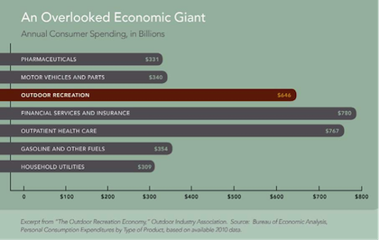 Overlooked Economic Giant - graphic